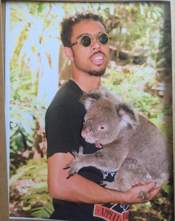 koala and vic