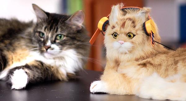 deadmau5-cat-headphones-3