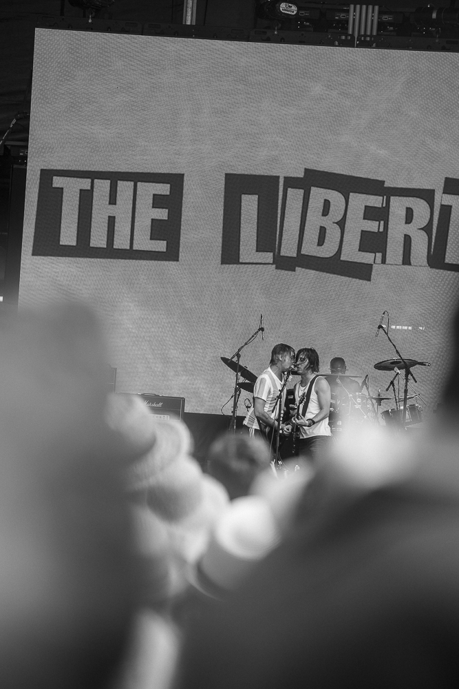 1V4A4732_The-Libertines_Copyright-Dani-Hansen